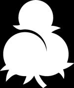 kleineknospe-logo