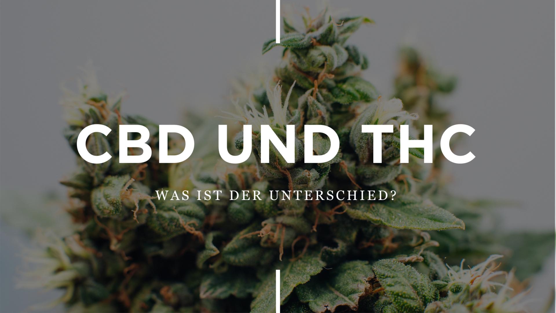 THC und CBD