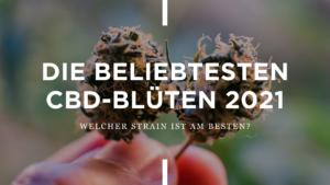 Die besten CBD Blüten 2021